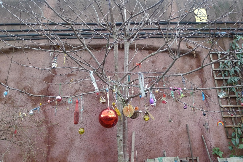I have never understood the importance of Christmas tree decorations until I saw a leafless Christmas tree.