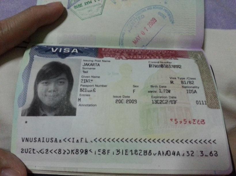 visa11